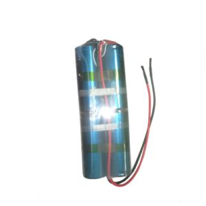 8s1p 25.6V 11000mAh Lithium LiFePO4 Battery Pack with BMS pictures & photos