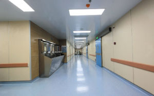 Hospital Wall Protection Guard for Sale pictures & photos