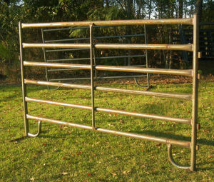 Cattle Panel pictures & photos