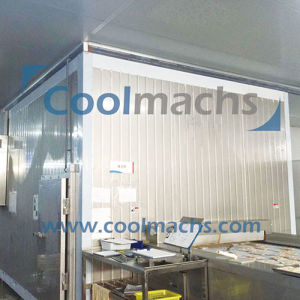 IQF Tunnel Freezer for Seafood Vegetables and Fruits pictures & photos