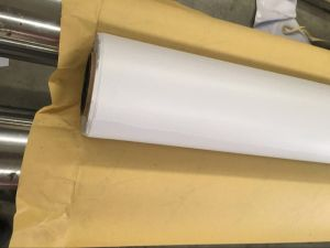 Nantong Factory PVC Coated Fabric pictures & photos