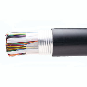Cat3 Telephone Cable 20 Pairs Bare Copper Black pictures & photos