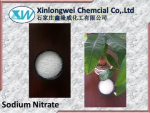 High Purity Sodium Nitrate 99.7% with Good Price pictures & photos