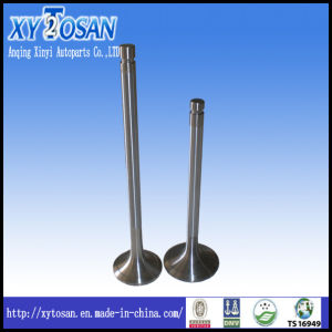 Engine Valve for Mercedes Benz Om366/ Om355/ Om422 (ALL MODELS) pictures & photos