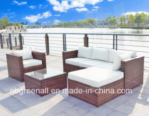Hot Sale Outdoor Patio Rattan/Wicker Sofa Garden Furniture pictures & photos
