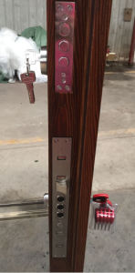 Mosa/Matt Color New Design Steel Door (RA-S026) pictures & photos