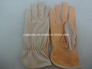 Work Glove-Working Gloves-Safety Glove-Garden Glove-Industrial Glove-Protective Glove pictures & photos