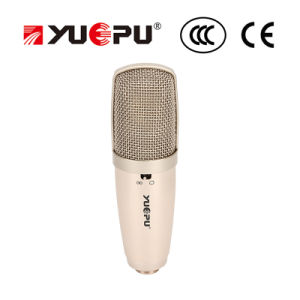 Recording Microphone for Professional Performance
