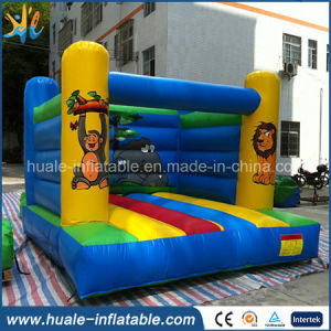 Good Quality Inflatable Jumping Bouncer for Children pictures & photos