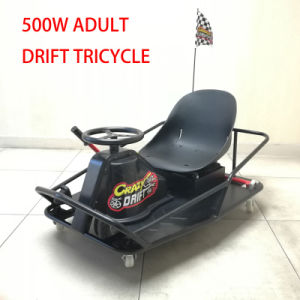 Adult Pedal 500W Brushless Motor Electric Racing Go Kart pictures & photos