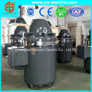 High Voltage Vertical Hollow Shaft Motor for Deep Water Pump pictures & photos