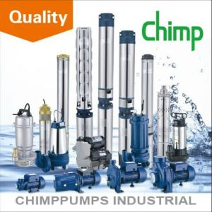 Chimp Single Phase Submersible Centrifugal Electric Water Pump for Deep Well pictures & photos
