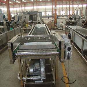 Trustworthy Good Quality Vegetable Washers pictures & photos