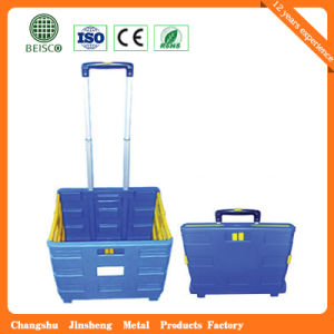 Modern Design Plastic Basket with Different Price (JS-SBN06) pictures & photos