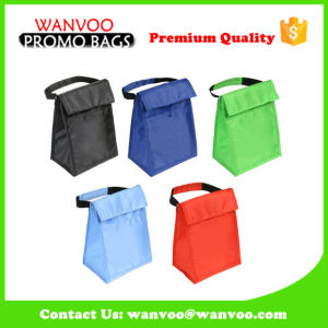 Various Color Foldable Insulated Cooler Bag for Picnic pictures & photos