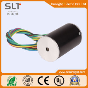 36mm 12V 8000rpm Electrical Brushless DC Motor pictures & photos
