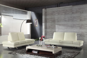 Modern Living Room Sofa with Genuine Leather Sofa (HC7336) pictures & photos