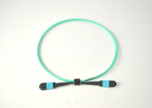 MPO-MPO Fiber Optic Patch Cord pictures & photos