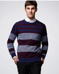 Long Sleeve Striped Pullover Man Sweater pictures & photos