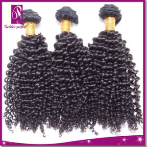 100% Hair Extension Kinky Curl Virgin Hair