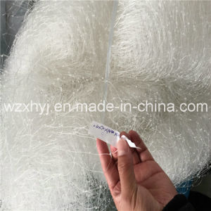 0.60mmx70mdx101.6mmst Dws Monofilament Fishing Net pictures & photos