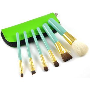 Shiny Color Portable Beauty Kits Makeup Brush Set pictures & photos