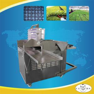 China Hydroponic Lettuce Seeder Machine