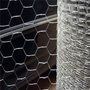 High Quality ISO Durable PVC Coated Hexagonal Wire Mesh pictures & photos