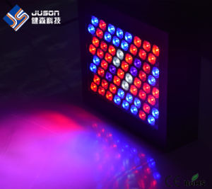 Factory Wholesale 300W Full Spectrum LED Grow Lights for Hydroponics pictures & photos
