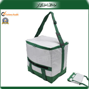 Foldable Non Woven Food Chiller Bag pictures & photos