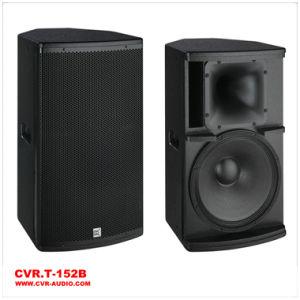 Professional Speaker Cvr PRO Aduio Speaker System pictures & photos