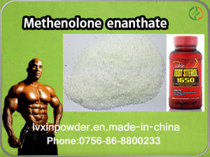 Factory Direct Supplying Primobolan Steroids / Methenolone Acetate pictures & photos