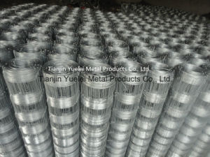 Galvanized Welded Wire Mesh From China Supplier, Low Price Galvanized Hexagonal Wire Mesh, Welded Wire Mesh for Sale pictures & photos