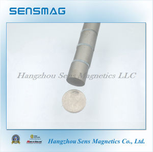 Customized Permanent Rare Earth Sm2co17 Magnet with RoHS pictures & photos