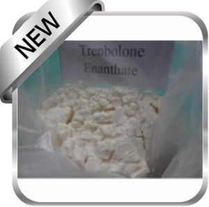 Trenbolone Enanthate 10161-33-8 Hot Sell pictures & photos