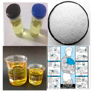 Hharmaceutical-Grade Steroid Hormone Powder Methenolone Acetate Injectable pictures & photos