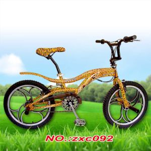20inch Mini BMX Model Bike/Cycle with Wheel Card or Not pictures & photos