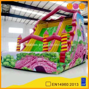 Inflatable Arch Bridge Water Slide Amusement Park (aq1128-1) pictures & photos
