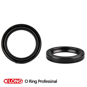 Double Lips Tc Type Oil Seals pictures & photos