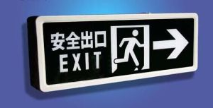 Airport Subway Public Places Safety Exit LED Signs pictures & photos