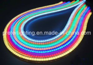 High-Quality Flat Round LED Light Neon Flex LED Rope Light with CE RoHS pictures & photos