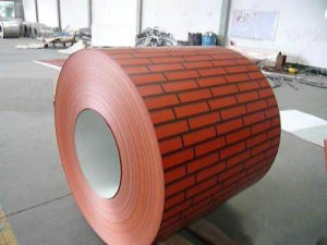 Jiangsu Factory Direct Color Coated PPGL Coil pictures & photos
