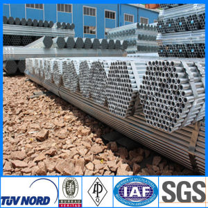 Hot Sale Galvanzed Steel Pipe (KL-GLV002)