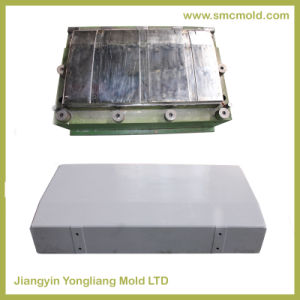 Mould for Electrical Panel pictures & photos