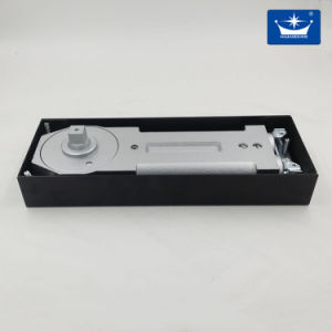 Double Spring/Floor Hinge for Glass Dood/120kg Door Weight pictures & photos