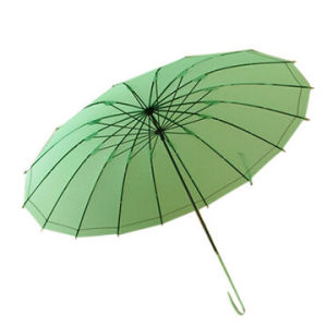 "24""*16k Pure Color Self-Opening Straight Umbrella (BR-ST-196) pictures & photos"