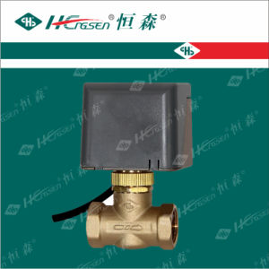 Split-Type Motorized Valve Df-02 pictures & photos