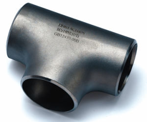 Stainless Steel Equal Tee Fitting and Butt Weld Fitting Pipe