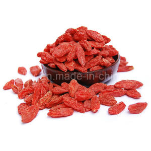 Medlar Lycium Barbarum Wolfberry Dried Fruit Goji pictures & photos
