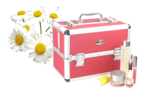 Colorful Aluminium Cosmetic Case for Makeup with Trays pictures & photos